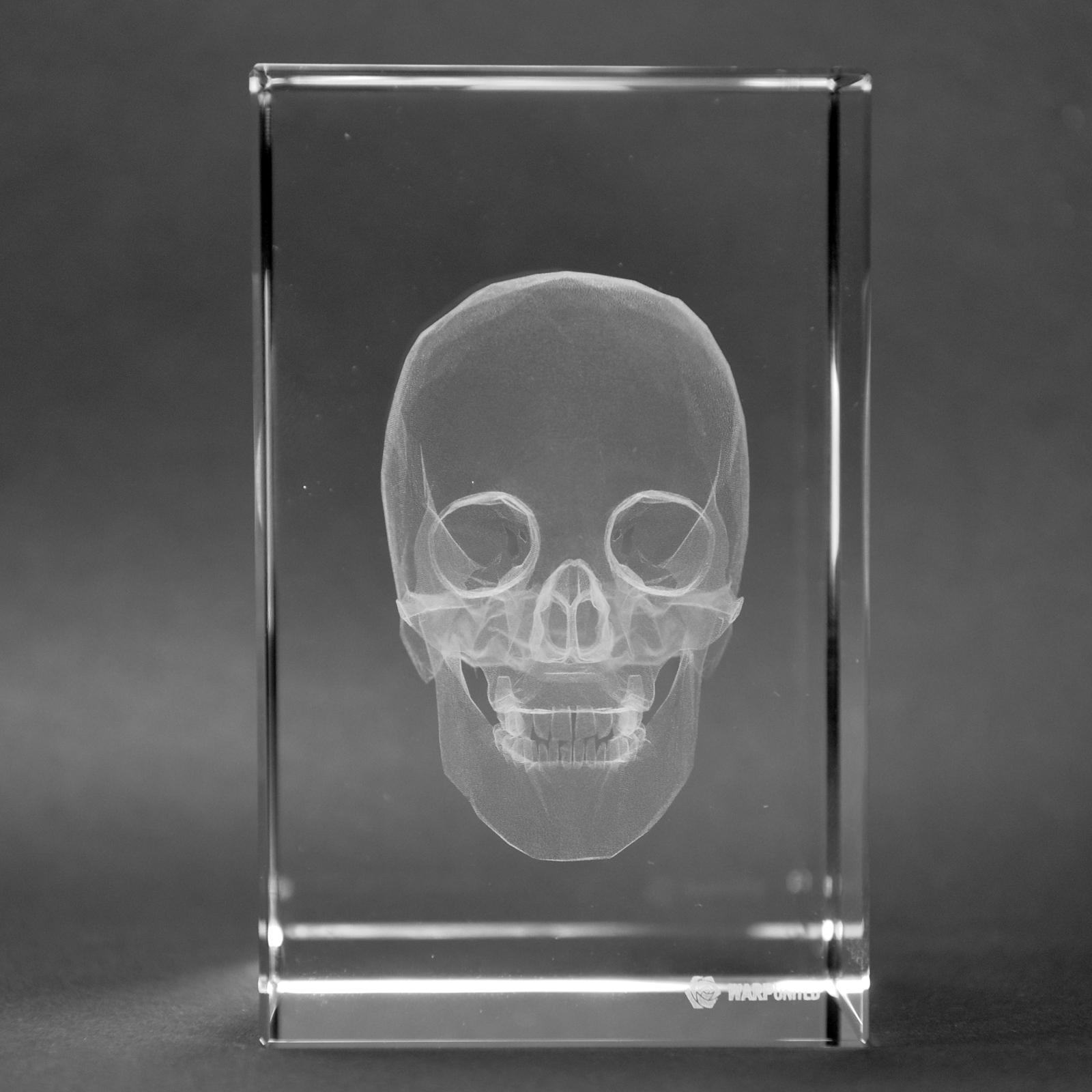 Warp United Crystal 3D Human Skull and Teeth Anatomy High Definition Laser Engraved Medical Science Gift Table Decoration 1lb Optical Glass