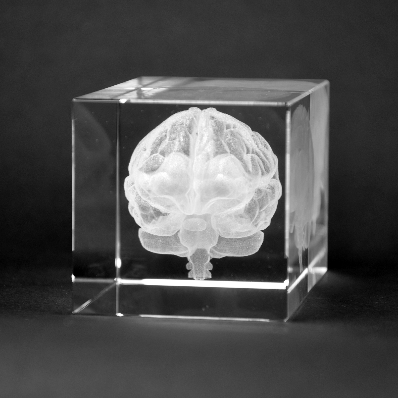 Warp United Crystal 3D Human Brain with Coronary Artery Anatomy High Definition Laser Engraved Medical Science Gift Table Decoration 1lb Optical Glass